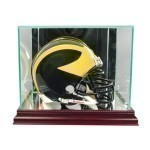 Glass Mini Helmet Case Thumbnail