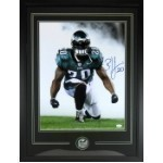 Brian Dawkins 16 x 20 Autographed Photo Thumbnail